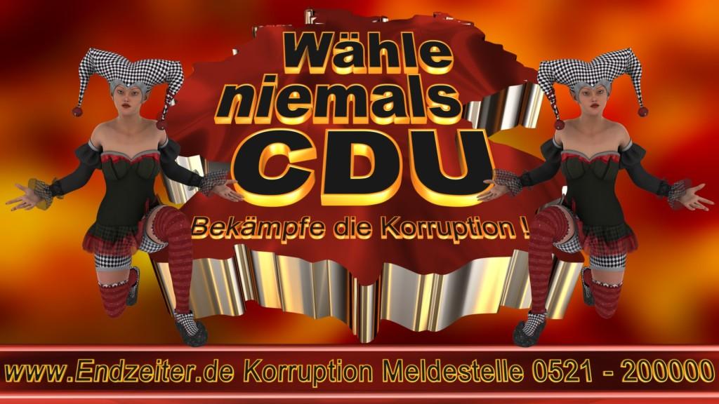Bundestagswahl.CDU.Termin.Datum.Umfrage.Prognose.Stimmzettel.Wahlwerbung.Plakate (10)_1