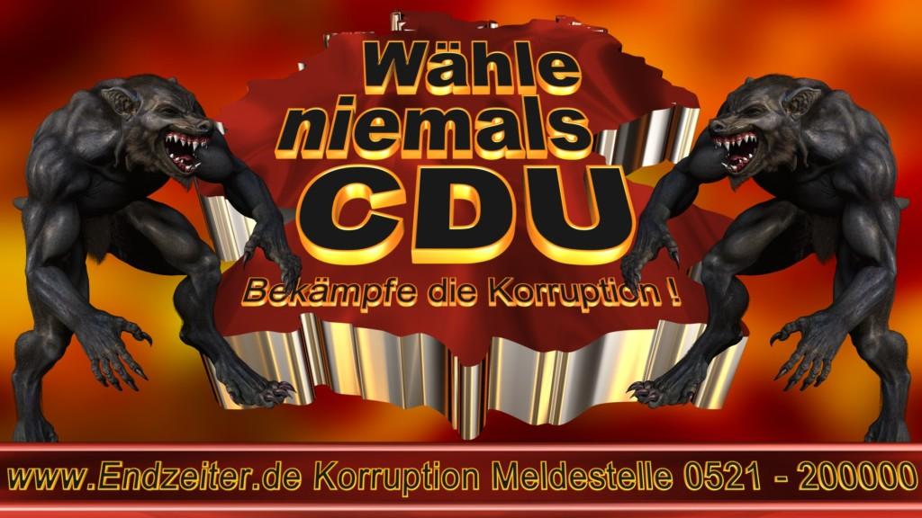 Bundestagswahl.CDU.Termin.Datum.Umfrage.Prognose.Stimmzettel.Wahlwerbung.Plakate (11)_1