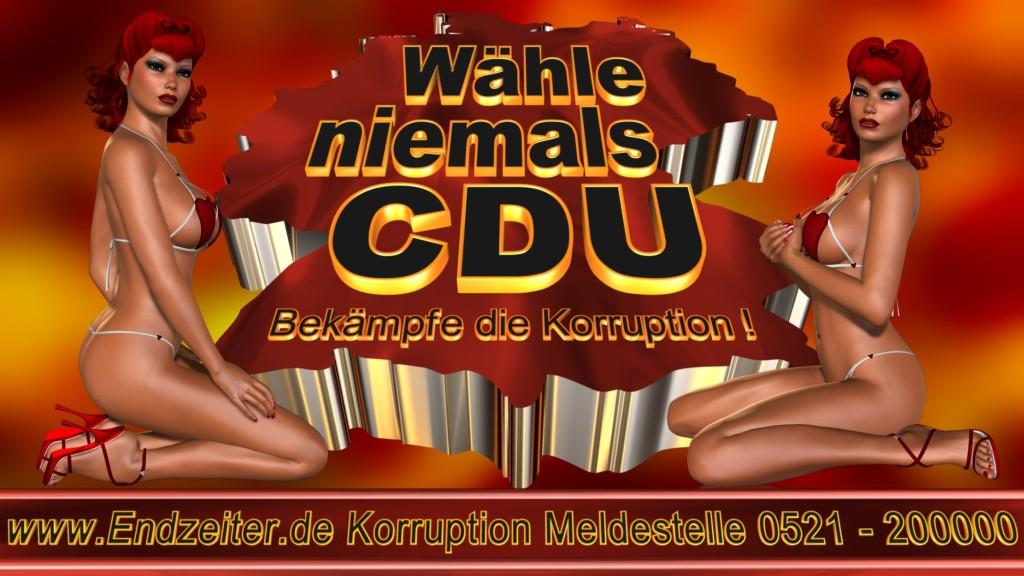 Bundestagswahl.CDU.Termin.Datum.Umfrage.Prognose.Stimmzettel.Wahlwerbung.Plakate (12)_1