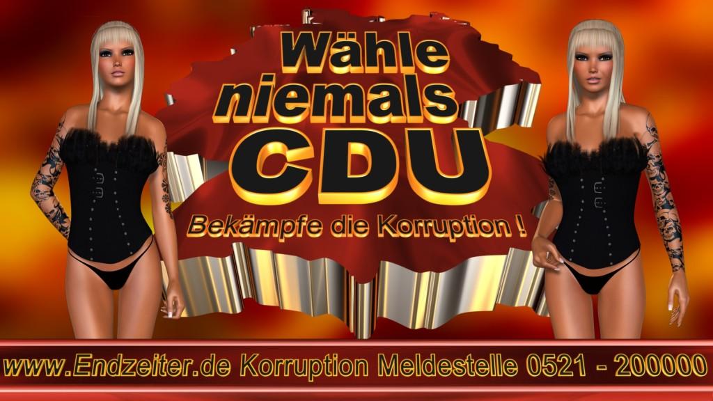 Bundestagswahl.CDU.Termin.Datum.Umfrage.Prognose.Stimmzettel.Wahlwerbung.Plakate (14)_1