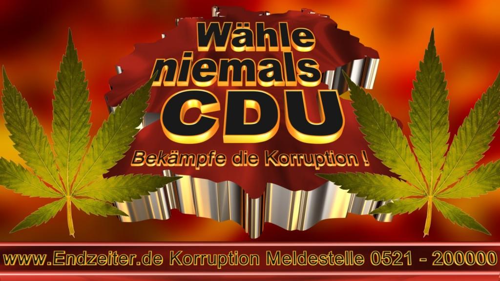 Bundestagswahl.CDU.Termin.Datum.Umfrage.Prognose.Stimmzettel.Wahlwerbung.Plakate (16)_1