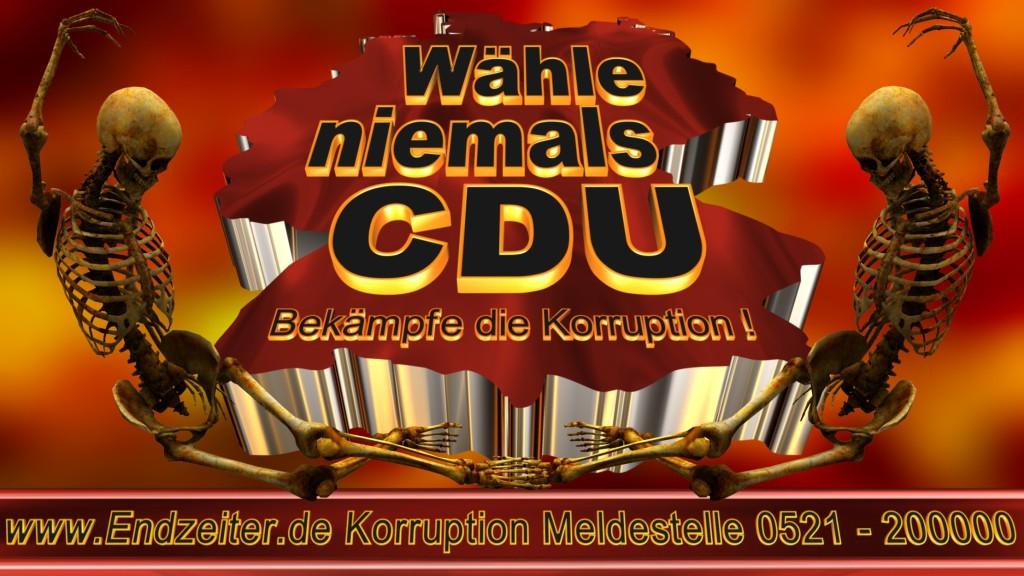Bundestagswahl.CDU.Termin.Datum.Umfrage.Prognose.Stimmzettel.Wahlwerbung.Plakate (18)_1