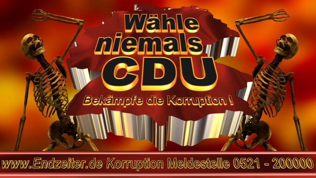 Bundestagswahl.CDU.Termin.Datum.Umfrage.Prognose.Stimmzettel.Wahlwerbung.Plakate (19)_1