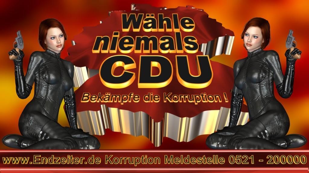 Bundestagswahl.CDU.Termin.Datum.Umfrage.Prognose.Stimmzettel.Wahlwerbung.Plakate (1)_1