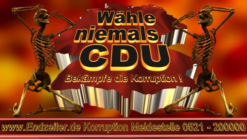 Bundestagswahl.CDU.Termin.Datum.Umfrage.Prognose.Stimmzettel.Wahlwerbung.Plakate (20)_1