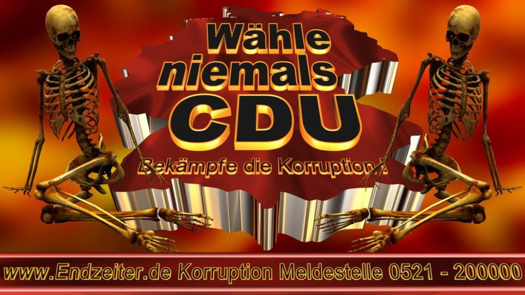 Bundestagswahl.CDU.Termin.Datum.Umfrage.Prognose.Stimmzettel.Wahlwerbung.Plakate (21)_1