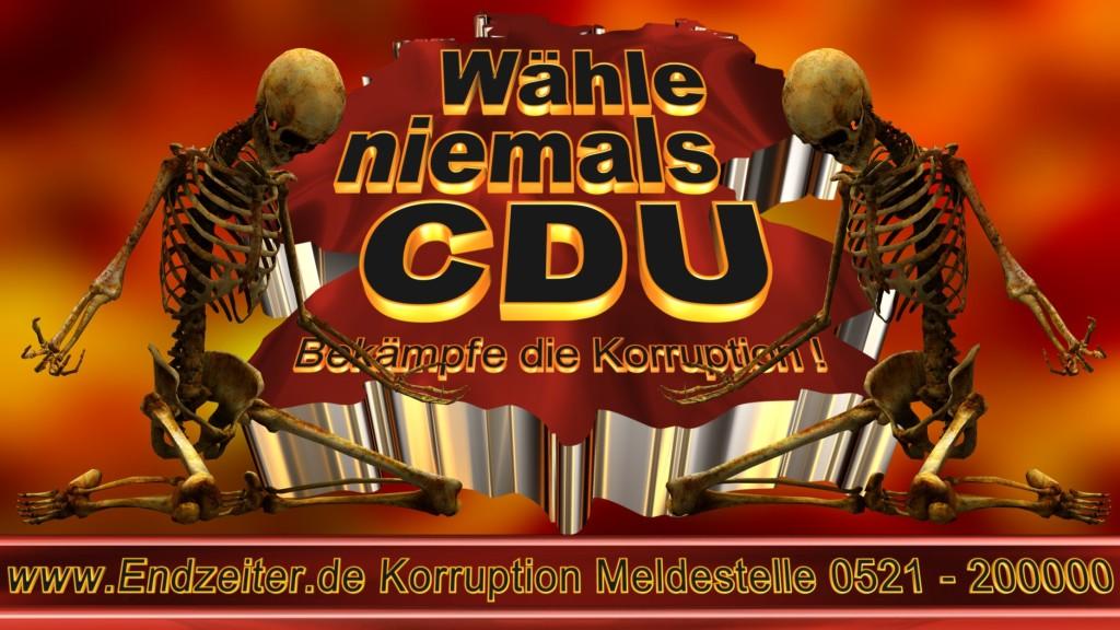 Bundestagswahl.CDU.Termin.Datum.Umfrage.Prognose.Stimmzettel.Wahlwerbung.Plakate (22)_1