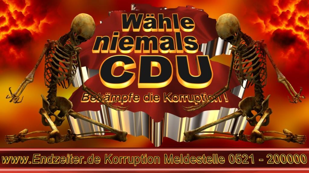 Bundestagswahl.CDU.Termin.Datum.Umfrage.Prognose.Stimmzettel.Wahlwerbung.Plakate (23)_1