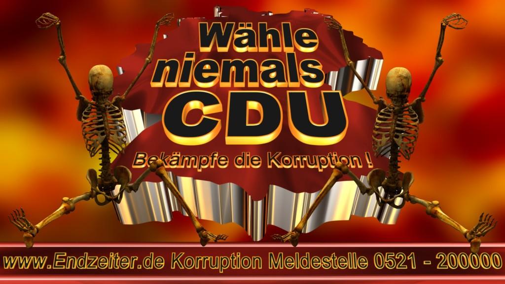 Bundestagswahl.CDU.Termin.Datum.Umfrage.Prognose.Stimmzettel.Wahlwerbung.Plakate (24)_1