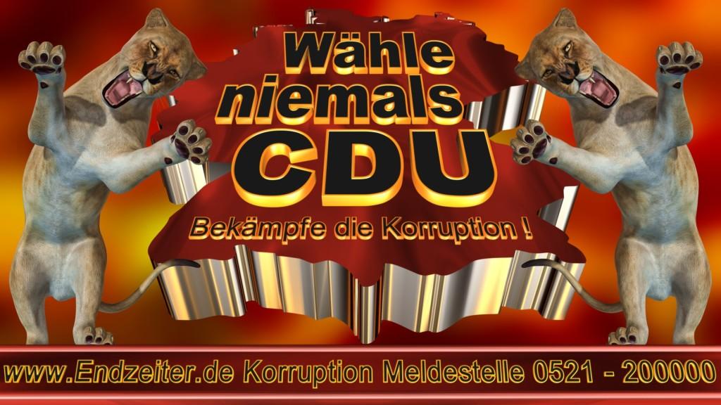 Bundestagswahl.CDU.Termin.Datum.Umfrage.Prognose.Stimmzettel.Wahlwerbung.Plakate (25)_1
