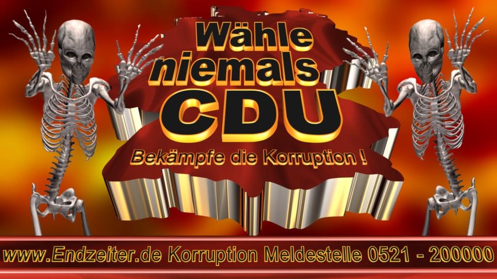 Bundestagswahl.CDU.Termin.Datum.Umfrage.Prognose.Stimmzettel.Wahlwerbung.Plakate (26)_1