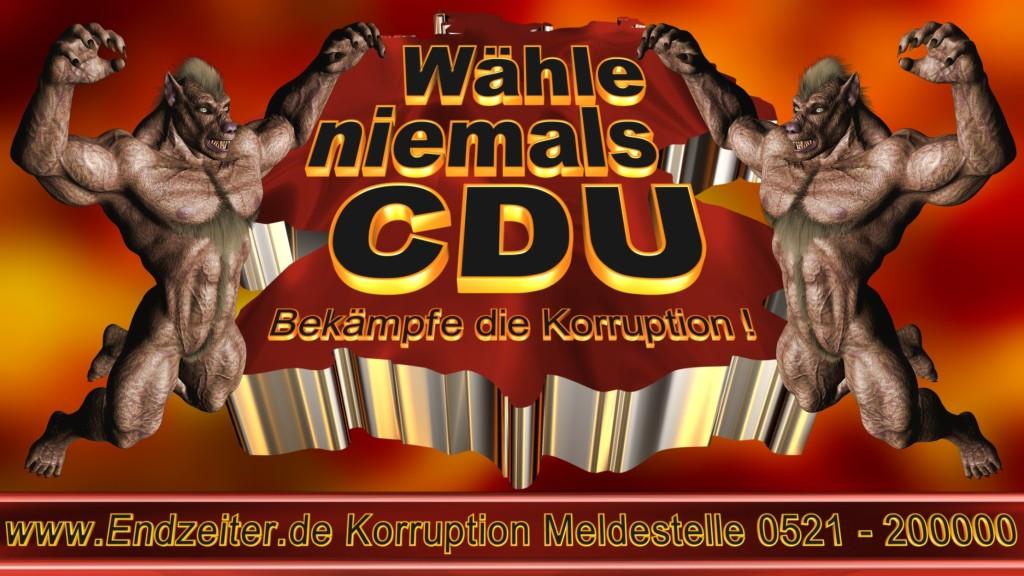 Bundestagswahl.CDU.Termin.Datum.Umfrage.Prognose.Stimmzettel.Wahlwerbung.Plakate (27)_1