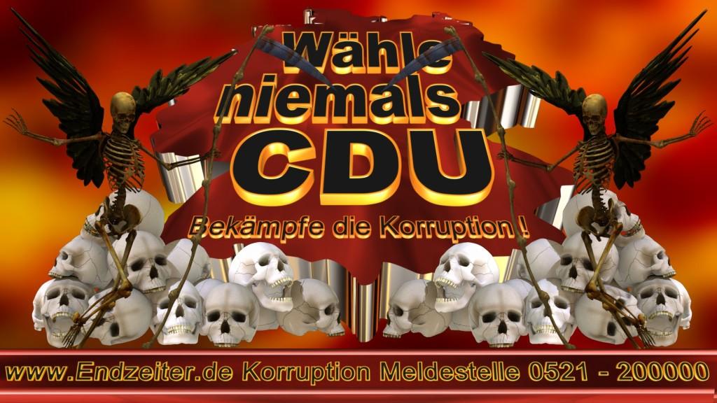 Bundestagswahl.CDU.Termin.Datum.Umfrage.Prognose.Stimmzettel.Wahlwerbung.Plakate (28)_1