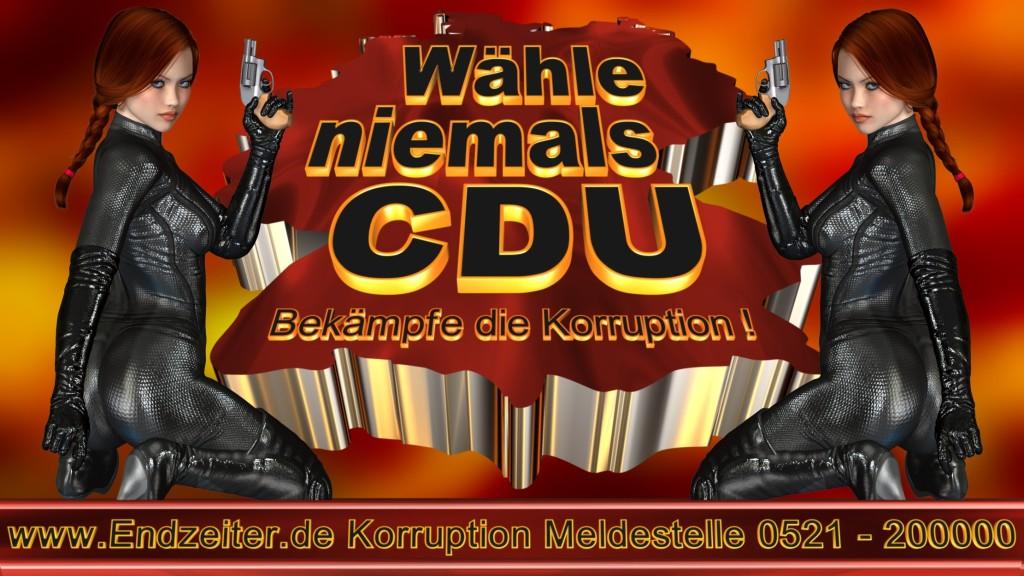 Bundestagswahl.CDU.Termin.Datum.Umfrage.Prognose.Stimmzettel.Wahlwerbung.Plakate (2)_1