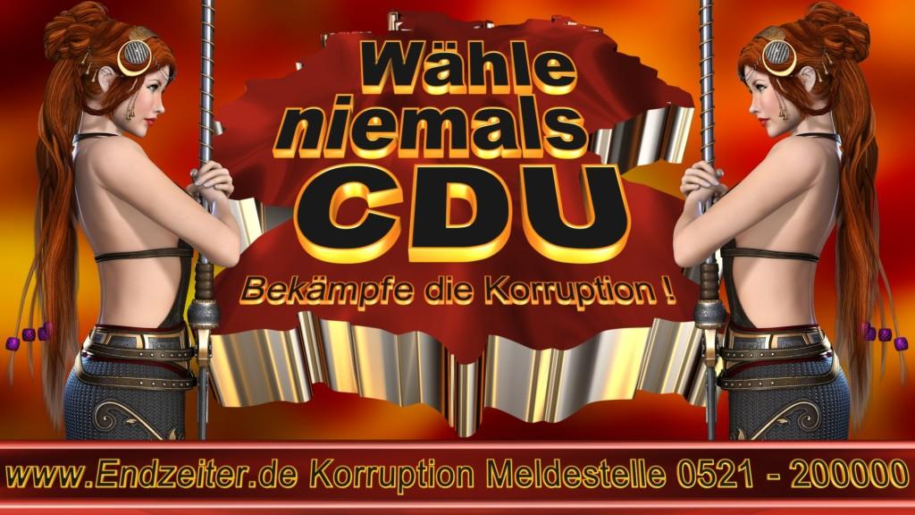 Bundestagswahl.CDU.Termin.Datum.Umfrage.Prognose.Stimmzettel.Wahlwerbung.Plakate (4)_1