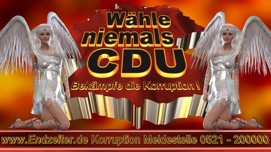 Bundestagswahl.CDU.Termin.Datum.Umfrage.Prognose.Stimmzettel.Wahlwerbung.Plakate (5)_1