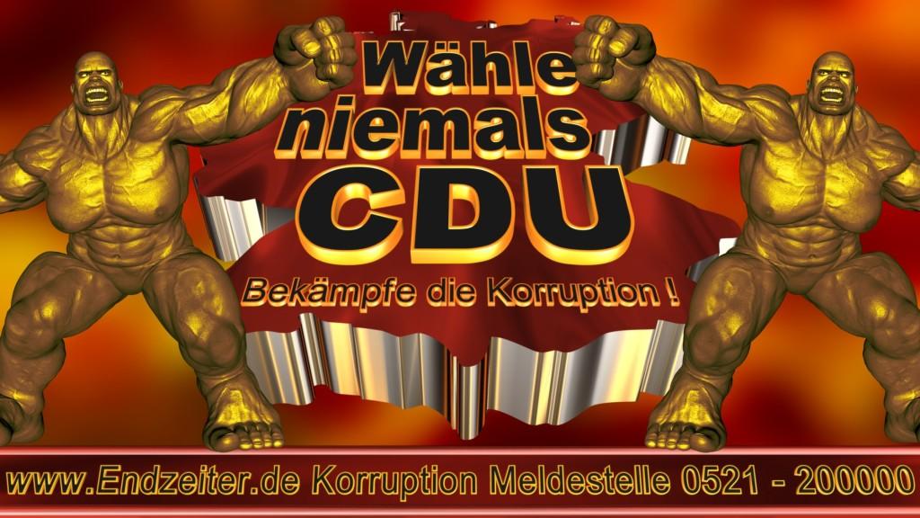 Bundestagswahl.CDU.Termin.Datum.Umfrage.Prognose.Stimmzettel.Wahlwerbung.Plakate (6)_1