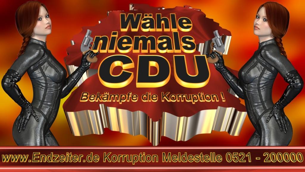 Bundestagswahl.CDU.Termin.Datum.Umfrage.Prognose.Stimmzettel.Wahlwerbung.Plakate (7)_1