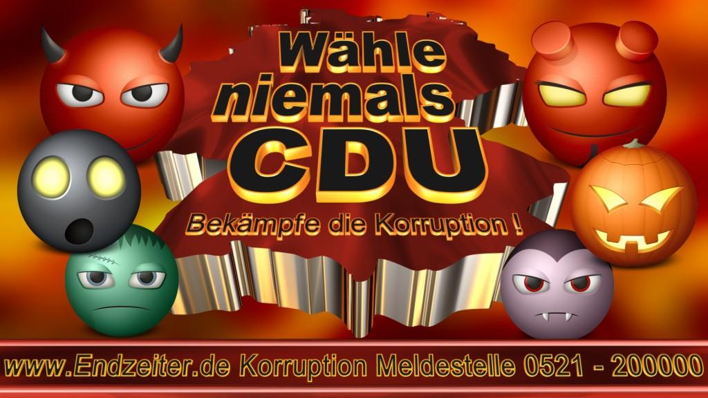 Bundestagswahl.CDU.Termin.Datum.Umfrage.Prognose.Stimmzettel.Wahlwerbung.Plakate (8)_1