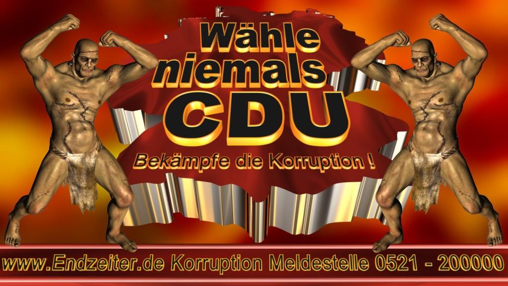 Bundestagswahl.CDU.Termin.Datum.Umfrage.Prognose.Stimmzettel.Wahlwerbung.Plakate (9)_1